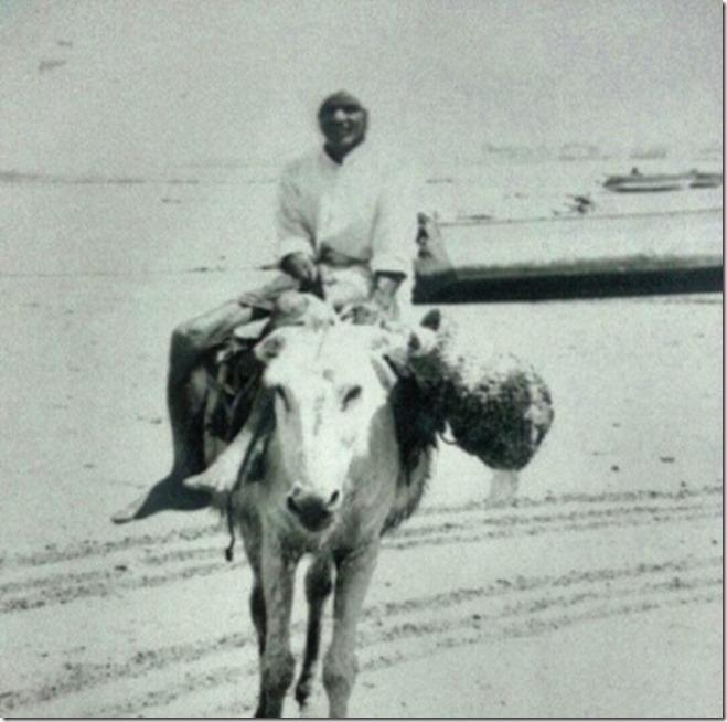 حجي حميد الحاج - الطريق للحضرة.