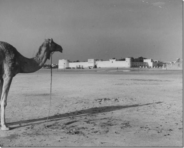 قلعة الشرطة في المنامة ( قلعة وزارة الداخلية حالياً)
