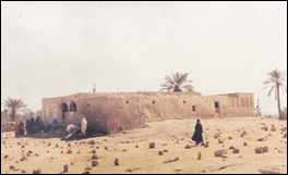 النبيه صالح 1