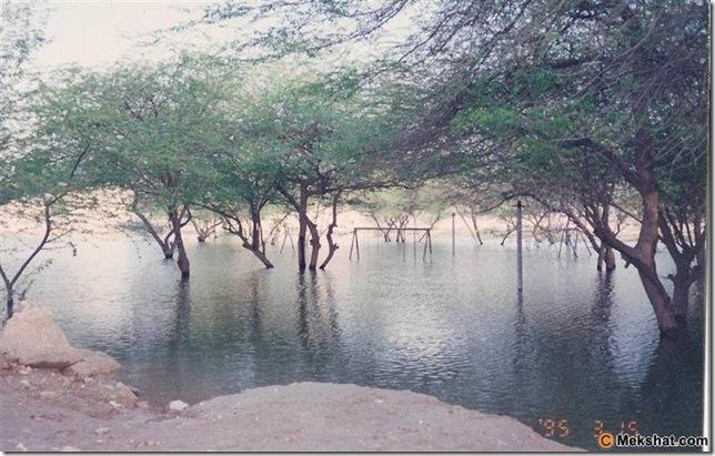 متنزه وادي الحنينية 1