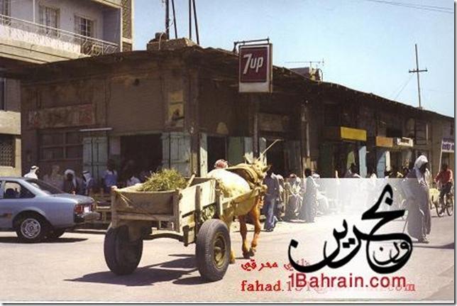 1Bahrain-d96dab1efe