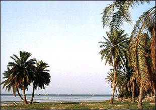 ساحل سماهيج