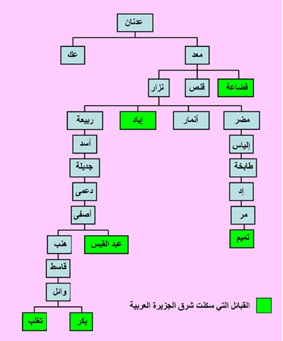 ســنــوات الــجــريــش آثار وترآث البحرين